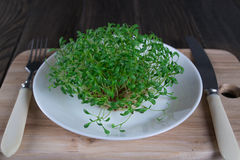 Crescione fresco sulla tavola di legno con la forcella ed il coltello Fuoco selettivo Fotografia Stock Libera da Diritti
