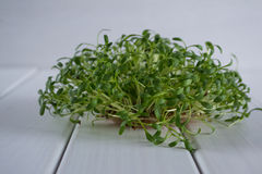 Crescione fresco sulla tavola di legno Fuoco selettivo fotografie stock