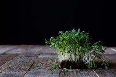 Crescione sul vecchio tavolo da cucina, fondo nero fotografia stock