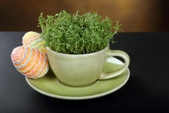 Crescione in tazza ed uova di Pasqua Fotografia Stock Libera da Diritti