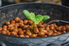 Crescita della papaia Immagini Stock Libere da Diritti