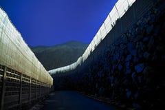 Crescita della piantagione Fotografia Stock Libera da Diritti