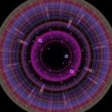 Crescita simmetrica dei batteri Fotografie Stock Libere da Diritti