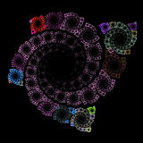 Crescita simmetrica dei batteri Immagine Stock Libera da Diritti