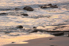 Cresent strand, Florida soluppgång Royaltyfri Bild