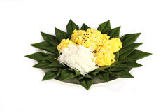 Crespón del arroz de la haba de Mung Imagen de archivo libre de regalías