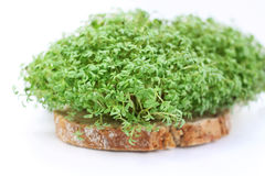 Cress bread Royalty Free Stock Image