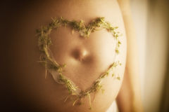 Cress heart on baby bump Royalty Free Stock Photography