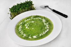 Cress Soup Stock Photo