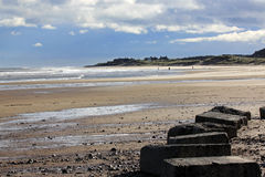 Cresswell beach, northumberland, England. Cresswell beach at the southern end of Druridge Bay in Northumberland, England. In the foreground are the anti tank Royalty Free Stock Photos