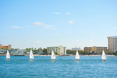 Cressy Cup qualifying race. In Clearwater Beach, Florida Royalty Free Stock Photography