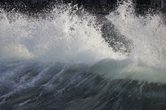 Crest. The backlit backside of an ocean wave cresting in Hawai'i Stock Photography