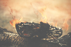 Crest of flame on burning wood. Burned charcoal and ash from fir Royalty Free Stock Images