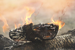 Crest of flame on burning wood. Burned charcoal and ash from fire Royalty Free Stock Images