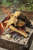 Crest of flame on burning wood. In fireplace Stock Photos