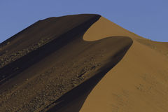 The crest of a red dune in the Namib Desert, in Sossusvlei, Nami Royalty Free Stock Photo
