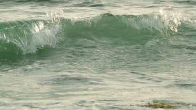 CREST van de overzeese golf Langzame Motie stock videobeelden