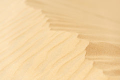 Sand dune. Crest of wavy sand dune, shallow dof royalty free stock images