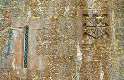 Mossy Castle Wall Stock Image