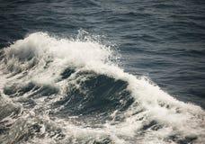Cresta bianca di un'onda del mare Fuoco selettivo Profondità bassa di fie immagini stock libere da diritti
