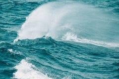 Cresta blanca de una onda del mar Foco selectivo Profundidad baja del fie Fotos de archivo