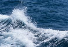 Cresta blanca de una onda del mar Foco selectivo Profundidad baja del fie Foto de archivo