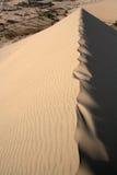 Cresta de la extremidad de la duna Imagen de archivo libre de regalías