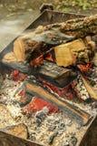 cresta de la llama en la madera ardiente Fotos de archivo libres de regalías