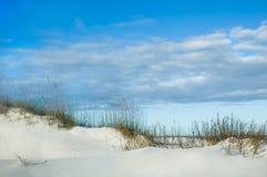 Cresta della duna di sabbia Fotografie Stock Libere da Diritti