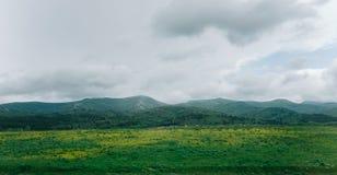 Cresta della montagna di estate immagini stock libere da diritti