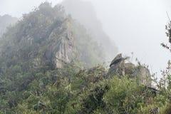 Cresta della montagna in nebbia immagine stock