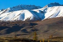Cresta delle montagne di Altai, Siberia ad ovest, Russia di Chuya nave Fotografia Stock Libera da Diritti