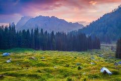 Cresta Di Enghe bergketen bij mistige de zomerochtend Stock Fotografie