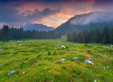 Cresta di Enghe mountain range at foggy summer morning. Dolomite Stock Images