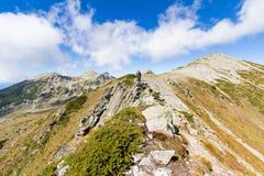 Cresta diritta della montagna di viaggiatore con zaino e sacco a pelo della donna Fotografia Stock