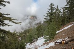 Cresta NationalForest di Angeles fotografia stock libera da diritti