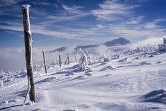 Cresta nevosa di inverno Fotografia Stock
