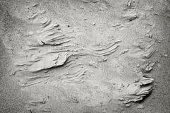 Creste della sabbia fotografia stock