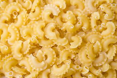 Creste di gallo pasta close up. Background stock images