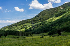 Crested ландшафт горы Колорадо butte Стоковые Изображения RF