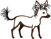 Crested китайская собака иллюстрация вектора