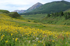 Crested Butte, Colorado Stock Photography