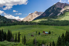 Crested butte colorado mountain landscape and wildflowers Royalty Free Stock Image