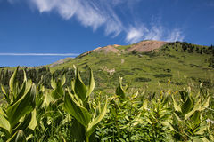 Crested Butte Mountains Stock Photography