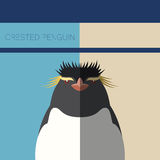 Crested Penguin flat postcard Stock Photography