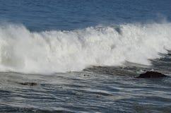 Cresting wave. Crashing near shore Stock Image