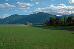Creston BC Farm, BC, Canada. Royalty Free Stock Photo