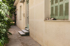 Creta de Rethymnon, ilha, Grécia, - 1º de julho de 2016: Gato do sono na janela na jarda grega no dia de verão quente no pa de Re Fotografia de Stock Royalty Free