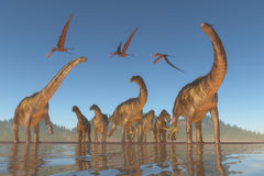 Cretaceous Argentinosaurus Herd Royalty Free Stock Photography