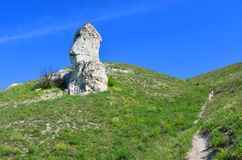 Cretaceous outcrops nature reserve Divnogorie Royalty Free Stock Photography